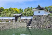 新緑の桜田門