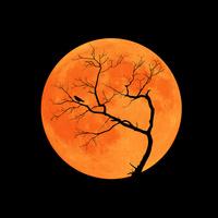 月にシルエットの枯れ木とカラスのハロウィンイメージ