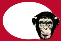 POPアートチンパンジー