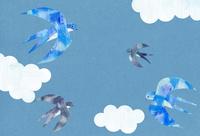 空飛ぶつばめと雲