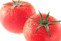 トマト 10323000637| 写真素材・ストックフォト・画像・イラスト素材|アマナイメージズ