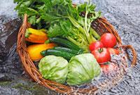 川で冷やしている野菜 10323001628| 写真素材・ストックフォト・画像・イラスト素材|アマナイメージズ