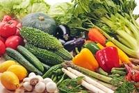 野菜集合 10323003086| 写真素材・ストックフォト・画像・イラスト素材|アマナイメージズ