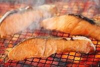 時鮭の炭火焼き