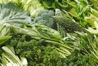 青汁の素になる野菜 10323003855| 写真素材・ストックフォト・画像・イラスト素材|アマナイメージズ