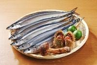 さんまと松茸とすだちと栗 10323004235| 写真素材・ストックフォト・画像・イラスト素材|アマナイメージズ