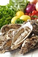 殻付き牡蠣 10323004846| 写真素材・ストックフォト・画像・イラスト素材|アマナイメージズ