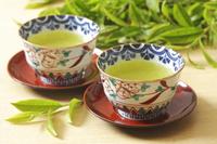 緑茶 10323005286  写真素材・ストックフォト・画像・イラスト素材 アマナイメージズ