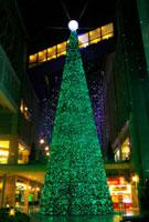 キャナルガーデンの大クリスマスツリー 10330000060| 写真素材・ストックフォト・画像・イラスト素材|アマナイメージズ