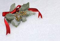 リボンとヒイラギの葉のクリスマスイメージ 10330000179| 写真素材・ストックフォト・画像・イラスト素材|アマナイメージズ
