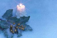ロウソクとヒイラギの葉のクリスマスイメージ
