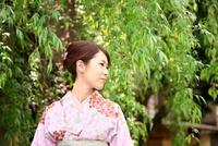 着物の女性 10330000329| 写真素材・ストックフォト・画像・イラスト素材|アマナイメージズ