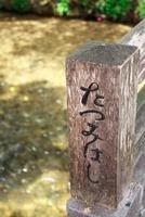 祇園白川たつみはし 10330000360| 写真素材・ストックフォト・画像・イラスト素材|アマナイメージズ