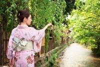 着物の女性 10330000369| 写真素材・ストックフォト・画像・イラスト素材|アマナイメージズ