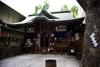 少彦名神社 10330000583| 写真素材・ストックフォト・画像・イラスト素材|アマナイメージズ