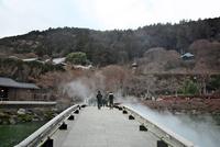 勝尾寺の参道と池 10330000591| 写真素材・ストックフォト・画像・イラスト素材|アマナイメージズ