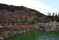 勝尾寺の弁天堂と池 10330000592| 写真素材・ストックフォト・画像・イラスト素材|アマナイメージズ
