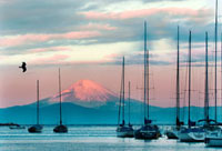 諸磯から相模湾越しに臨む富士の夜明け 10332000001| 写真素材・ストックフォト・画像・イラスト素材|アマナイメージズ