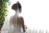 ウエディングドレスを着て結婚式へと向かう花嫁の後姿