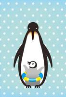 ペンギンサマー 10340000042| 写真素材・ストックフォト・画像・イラスト素材|アマナイメージズ