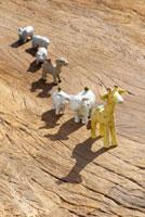 クラフトの動物たち 10341000551| 写真素材・ストックフォト・画像・イラスト素材|アマナイメージズ