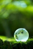 地球儀と苔