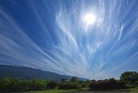 筋雲と太陽