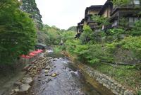黒川温泉の足湯