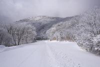 やまなみハイウェイの雪景色 10341010888| 写真素材・ストックフォト・画像・イラスト素材|アマナイメージズ