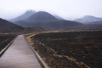 小雨降る野焼き後のタデ原湿原 10341011064| 写真素材・ストックフォト・画像・イラスト素材|アマナイメージズ