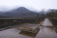 小雨降る野焼き後のタデ原湿原 10341011099| 写真素材・ストックフォト・画像・イラスト素材|アマナイメージズ