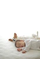 眠る子供とパピヨン