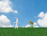 ウサギとカエル
