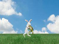相撲を取るウサギとカエル