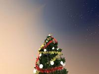 夜空とクリスマスツリー