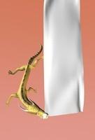 白い布をくわえた竜