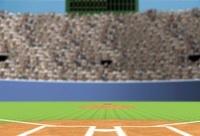 野球場 ホームベースから外野席を望む