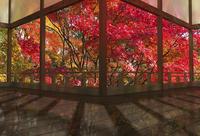 秋の和風建物の渡り廊下