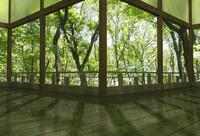 夏の和風建物の渡り廊下