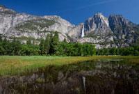 ヨセミテ滝と湿原