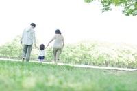 公園で手を繋いで歩く3人家族