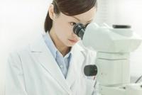 顕微鏡を覗く日本人女性研究者