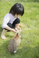 ウサギに野菜を与える女の子