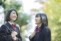 笑顔で会話をする女子高校生