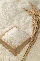 米と升と稲穂