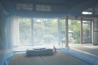 和室に蚊帳