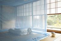 和室に蚊帳 10370005359| 写真素材・ストックフォト・画像・イラスト素材|アマナイメージズ