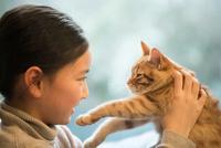 猫と遊ぶ少女 10373013725| 写真素材・ストックフォト・画像・イラスト素材|アマナイメージズ