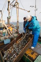 定置網漁の男性