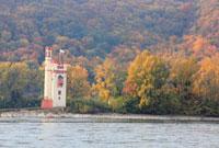 秋のねずみの塔